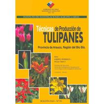 Técnicas De Producción Cultivo De Tulipanes Flores - Libro