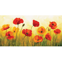 Flores Amapolas En Tela Canvas Bastidor De 80x40 Cm