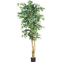 Árbol Casi Natural 5209 Ficus Seda 6-feet Verde