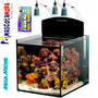 Acuario Marino Reef Yasha 36 Litros