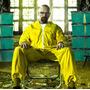Disfraz Serie Breaking Bad Traje Profesor Quimica Medellin