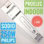 Lampara Sodio 250w E-40 Philips Son T Proelec Indoor