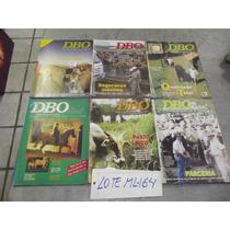 Lote Com 14 Revistas Dbo Pecuária Bovina Leiteira Corte