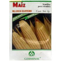 Semilla Para Siembra Maiz Blanco Elotero Germinal