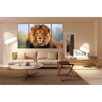 Felino Leon Bastidor Tela Canvas De 120x70 Cm Exelente