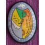 Parche Boy Scout 2° Sosneado Scouts De Argentina 2002