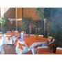 Renta Sillas,mesas,lonas,carpas,tarimas,salas Lounge