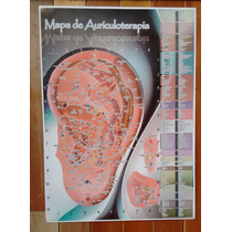 Poster Auriculoterapia 45 X 61 Cm, Acupuntura