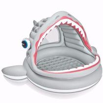Pileta Pelotero Gimnasio Inflable Intex Tiburon Bebes Promo!