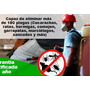 Fumigaciones Altamira (exterminios Y Control De Plagas)