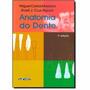 Livro - Anatomia Do Dente - Madeira Novo Lacrado<br><strong class='ch-price reputation-tooltip-price'>R$ 49<sup>90</sup></strong>