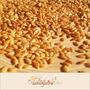 Linhaça Dourada - Semente 2kg