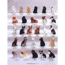 Cães De Raça 2 Miniaturas Esculturas Perfeitas Frete Grátis