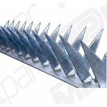 Lança Para Muro    Concertina-ouriço-mandíbula Rede Laminada