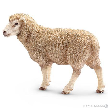 Resultado de imagem para carneiro