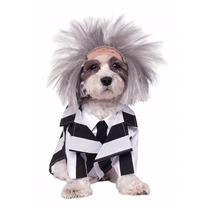 Disfraz De Beetlejuice Para Perros Mascotas Envio Gratis