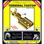 Terminal Faston Hembra / Desnudo / Kit 10 Piezas /