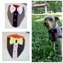 Bellos Accesorios Para Mascotas...al Mayor Y Al Detal...!!!!