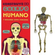 Construye Un Cuerpo Humano