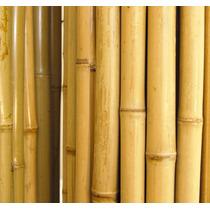 Bambu Natural Decoração Jardins Cercas Pérgolas - Dúzia
