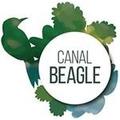 Canal Beagle