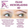 Curso De Cejas Microblading Y Micropigmentacion