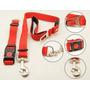 Correa Mascota Y Cinturon De Seguridad / Asia Import Trading