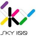 Proyecto Sky 100