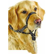 Coleira Cabresto Anti Puxão Cães Pet Shop Vários Tamanhos