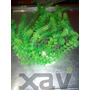 Alga O Mata Artificial Usado Xavi