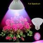 Luz Led Indoor Full Spectro 10wt