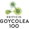 Proyecto Edificio Goycolea 100