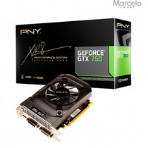 Placa Vga 1gb Pny Geforce Gtx 750 Máx. 3 Monitores Original