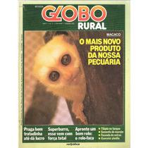 Revista Globo Rural - Novo Produto Pecuária - Ano 1 Nº 4
