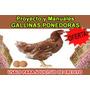 Proyecto+manuales De Gallinas Ponedoras Sirve Para Credito