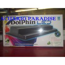 Lampara Dolphin De Led 24blanca Y 9 Actinia.