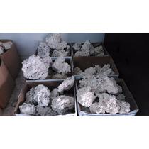 Rocha Para Aquario Marinho E Ciclideos-(5 Kilos) Coral Peixe
