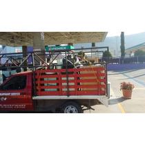 Fletes Y Mudanzas, Local - Foráneo, Renta De Vehículos