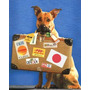 Traslados De Mascotas Y Personas - Mudanzas - A Todo El Pais