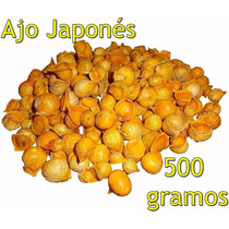 Ajo Japones 500 Gramos Ajo Chino Japanese Garlic Semilla