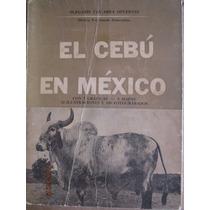 El Cebú En México, Olegario Vizcarra, 1963