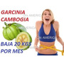 Pure Garcinia Cambogia, Maxima Concentracion Slim Max Xtreme
