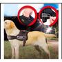 Arnes Para Perro, Paseo - Entrenamiento Para Correa O Mano