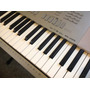 Teclado Casio Wk 225 Impecable