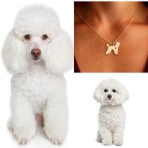 Collar De French Poddle Joyeria Forma De Perro