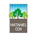 Proyecto Edificio Plaza Nataniel Cox