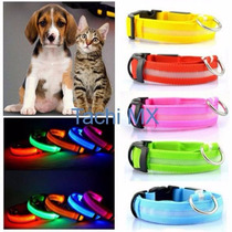 Collar Led Perro Gato Ajustable Brillante Luminoso Mascotas