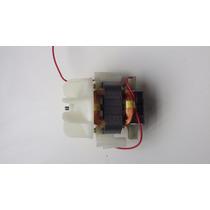 Motor De Secador Taiff 220v -fire Fox, Titanium, Expert Viss