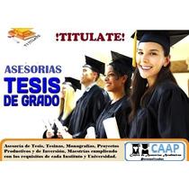 Asesoría Y Corrección Tesis Tesinas Monografias Proyectos