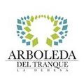 Proyecto Arboleda Del Tranque A